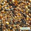Kép 1/2 - Alap galamb magkeverék (kimérve/kg)